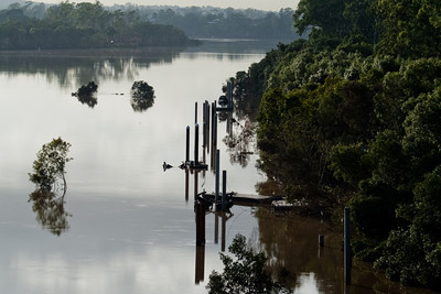 The Brisbane River in flood at Chelmer, 2011.